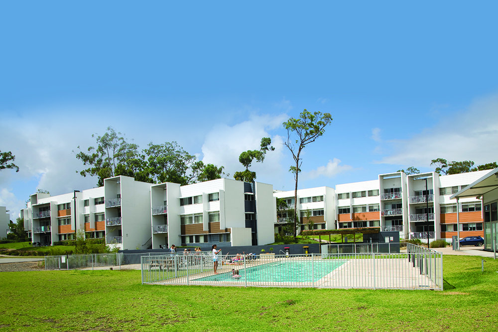 griffith university study abroad reviews