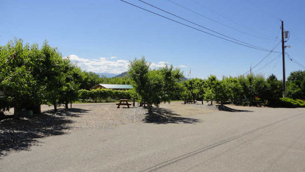 apple valley orchard rv park reviews