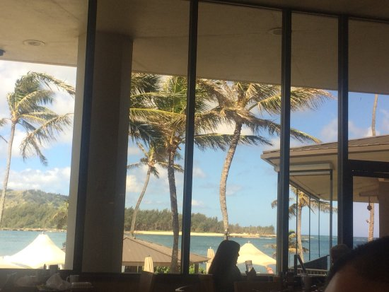 turtle bay resort cottages review